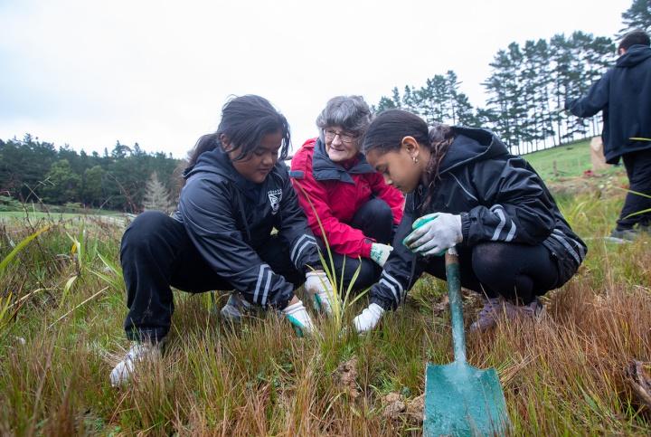 New Zealand - Tamaki Primary School And Freemasons Plant 800 Trees